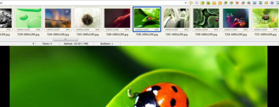 верхние фото в FastStone Image Viewer
