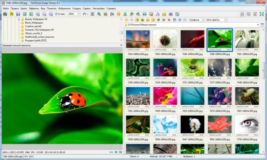 provodnik FastStone Image Viewer