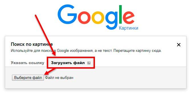 foto upload google dayafternight